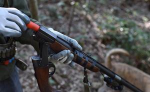 浙江台州一狩猎队员违规持上膛猎枪走火,致同伴死亡获缓刑