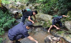"""游客在西双版纳放生""""生态杀手""""鳄龟,涉嫌违法将被罚两千"""