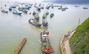 浙江省致信农业部建议提前休渔,15万渔民即将早一个月放假