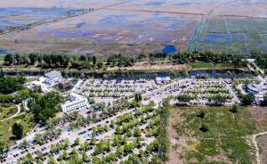 2017年4月29日,五一假期首日,河北省保定市安新县白洋淀景区,停车场内停满了车辆。东方IC 图
