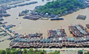 今日12时起,中国进入伏季休渔期