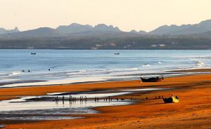 专家:近岸海域污染防治面临关键期,有赤潮、绿潮甚至白潮