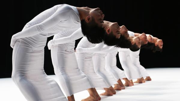 陶身体:为什么跳舞