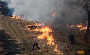 河南今年将新增2万摄像头防焚烧秸秆,可覆盖全省70%农田
