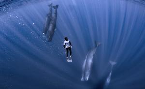 安徽泾县6学生沉迷蓝鲸死亡游戏,民警及时疏导拉回
