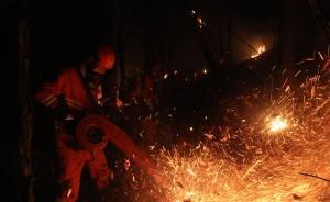 内蒙古那吉林场火灾东北线明火已扑灭,过火面积约五千公顷