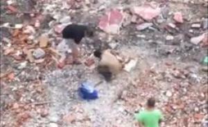 网曝两男子连拍13砖虐杀泰迪犬,疑剥皮后食用