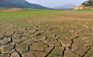 国家防总:全国耕地受旱面积超4千万亩,东北西部等旱情严重