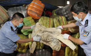 厦门海关截获500吨韩国旧服装,来自二手市场、太平间等