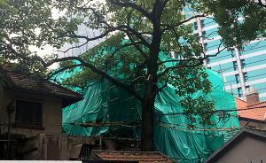 上海静安回应优秀历史建筑被拆:修复时间预计比造房子更久