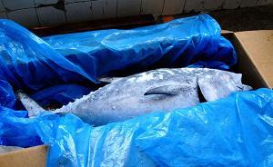 遭环保组织质疑后,京东宣布下架京东自营所售蓝鳍金枪鱼