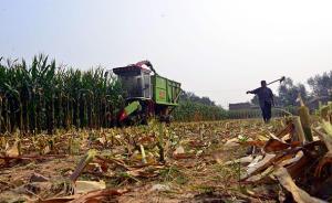 宅基地改革试点县调查:村民自愿有偿退出,有新居还获新耕地