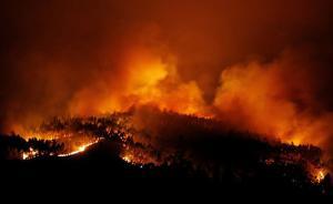 葡萄牙森林大火已致58人死亡,至少18人系驾车逃生时遇难