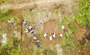 为寻一远征军老兵墓地,云南一高速公路项目停工三天