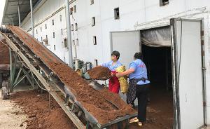 【共舞长江经济带】重庆永川:农民办家庭农场种菌菇年入十万
