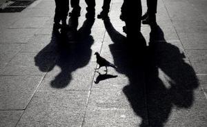 """重庆市纪委书记谈""""微腐败"""":""""蝇贪""""成群,其害如""""虎"""""""