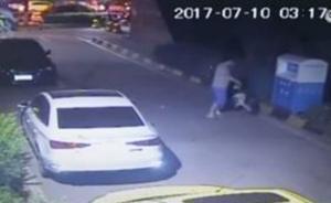 视频|西安一男子凌晨当街反复摔打小猫,塞入外卖箱后离开
