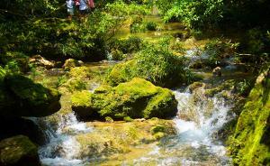 黑瞎子岛等17处将新建国家级自然保护区,含一东北虎保护区