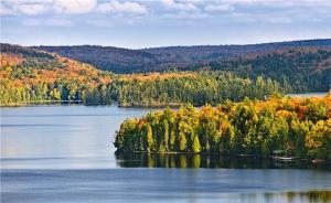 国家林业局启动新一期海防林建设工程,红树林保护将得到加强