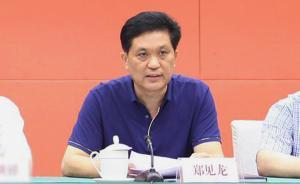 广西金融办党组副书记、副主任郑见龙接受组织审查