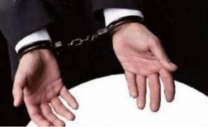 浙江警方为牛鉴定DNA抓到偷牛贼:流窜作案、无人机找目标
