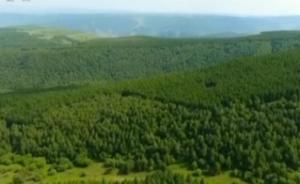 绿色奇迹丨茫茫荒原见证绿水青山之变