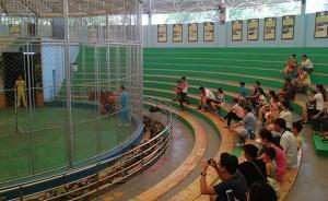 广州动物园取消历时24年马戏表演,马戏团不肯搬双方正沟通