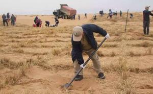 中国将建立荒漠化防治技术国际专家库,共享科技治沙成果