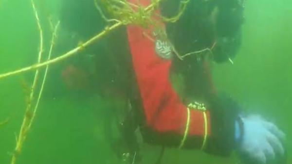 潘家口水库潜水员失联