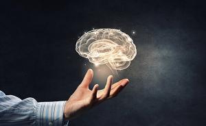 港大:刺激大脑海马体,可增强视力听力和触觉等反应达20%