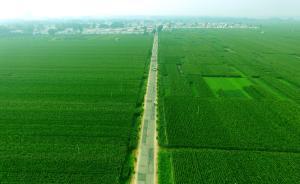 全国永久基本农田划定工作总体完成,划定后布局优化质量提升
