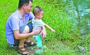 汉口公园现外来入侵物种牛蛙,专家:易泛滥成灾应打死并吃掉