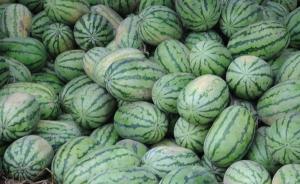 暖闻|村民80多万斤西瓜滞销,众人伸援手3天买60多万斤