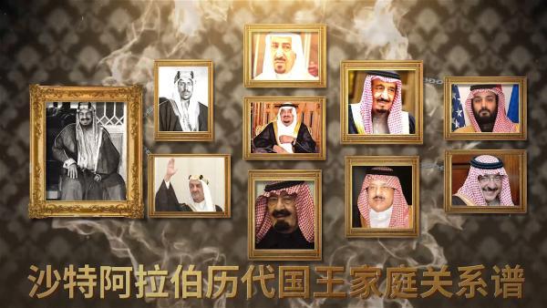 100秒看完沙特历代国王族谱改改改