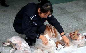 云南省景谷县森林公安公开焚烧销毁一批野生动物死体