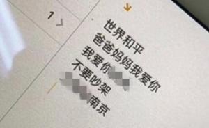 南京四民警抓嫌犯途中遇南航火警航班,惊魂一刻发生了什么?