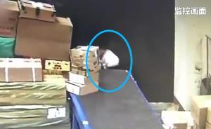 监拍:未成年快递小哥私拆包裹偷吃酱鸭
