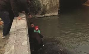 扬州一名城管冲进冰河救起落水儿童:想起当年没能救起的儿子