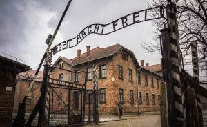 杨梦︱从奥斯维辛到南京:中国的纳粹屠犹教育