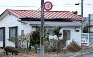 日本政府敲定消除福岛核事故形象受损战略,包括宣传食品安全