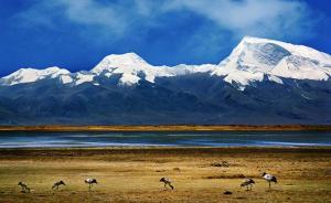 """中外联合研究:青藏高原河流是温室气体排放""""大户"""""""