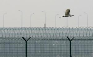 广东筑牢防逃堤坝:一批有外逃倾向的涉案人员被堵在国门之内
