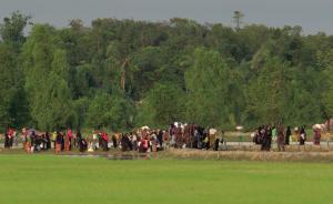 缅甸若开邦恐袭交火致71人死亡,当地族群关系长期不和