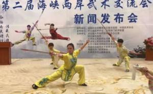 大陆台湾选手过招,第二届海峡两岸武术文化交流会石家庄开幕