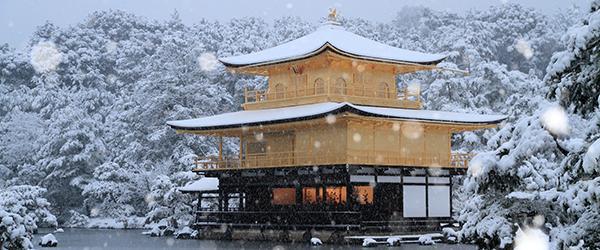 专访东京大学佛教学教授:现代日本僧侣与中国和尚完全不同